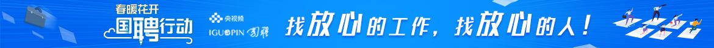 国聘官方网站
